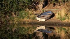 Rowboat on riverbank Stock Footage