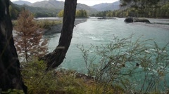 Stock video footage river clean.Water  Altai Stock Footage