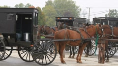 Amish buggies wait for their drivers Stock Footage