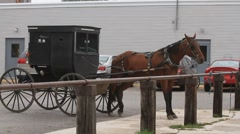 Amish buggy at rest Stock Footage