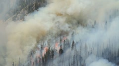 Forest Fire - stock footage