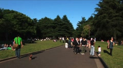 Yoyogi Park is one of the largest parks in Tokyo, Japan Stock Footage