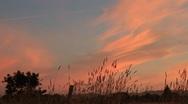 Sonoma Sunset Stock Footage
