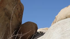 Twigs and Rocks at Rattlesnake Canyon in Joshua Tree Stock Footage