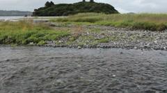 Island Pan To Fish Spawning Upstream Stock Footage