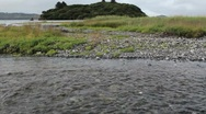 Stock Video Footage of Island Pan To Fish Spawning Upstream