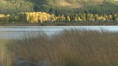 Vermilion Lakes Banff marshes Stock Footage