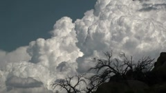Birds Cloud Puff Stock Footage