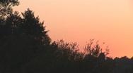 Stock Video Footage of sunset bg 1