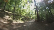 Stock Video Footage of POV - drive on road through forest