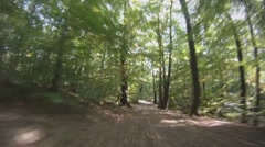 POV - drive on road through forest - stock footage