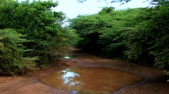 Dirt Road on Curacao Stock Footage