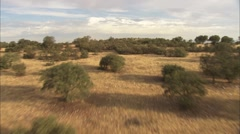 Countryside of Castilla 8 Stock Footage