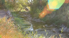 A gentle creek is accented by a rainbow of inspired flares Stock Footage
