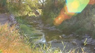 Stock Video Footage of A gentle creek is accented by a rainbow of inspired flares