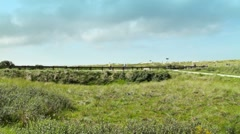 Stock Video Footage of Road Road In The Dunes of Ameland