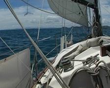Sailing New Zealand Stock Footage