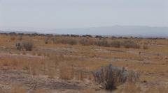 Carrizo Plain Scenic Stock Footage