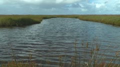 Wind blowing over pond, North Sea, Germany Stock Footage