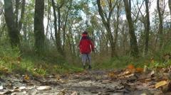 Hiking through autumn forest, Borkum, Germany Stock Footage