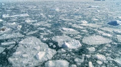 Drifting Arctic Ice Floes - stock footage