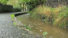 Wet Footpath by Stream in The Peak District Stock Footage