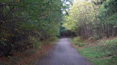 English Country Lane In Autumn Stock Footage