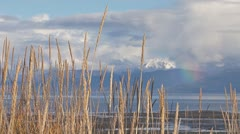 Waving Grasses Bay Glacier Mountains Rainbow Stock Footage