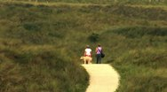 Two woman and a dog hiking Stock Footage