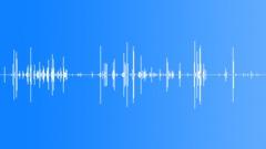 Peanut Shells Crackle 02 Sound Effect