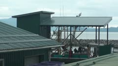 Fish cannery,  Wrangell Stock Footage