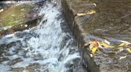 Stock Video Footage of Two small steps waterfall at lake outflow system