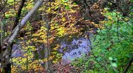 Stock Video Footage of Stylized fall forest with stream