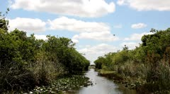 Everglades airboat Stock Footage