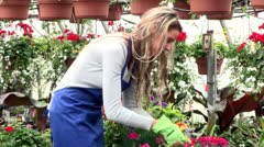 Gardening. - stock footage