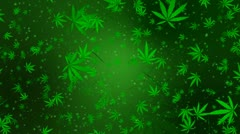 Marijuana Infinity Loop Stock Footage