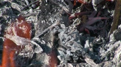 Coals in the fire Stock Footage