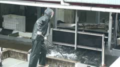 Juneau, fish hatchery Stock Footage