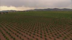 Countryside of Castilla 73 - stock footage