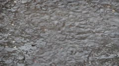 Streamlet from the rain Stock Footage