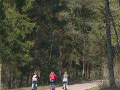 Thee cycling females traveling in forest. Rest active in nature. Stock Footage