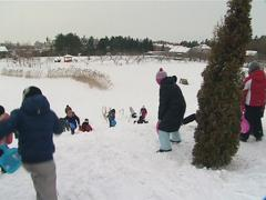 Children are moving from hill on snow. Advantages of winter. Stock Footage
