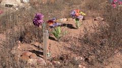Grave cemetery pioneer over grown weeds P HD 0241 Stock Footage