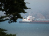 Tanker Ship 02 PAL Stock Footage