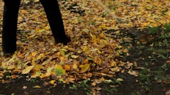 Street sweeper is cleaning fallen leaves Stock Footage