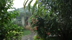 Heavy Rain, Raining, Tropical Storm, Rainy Season, Mansoon Jungle Forest, Cloudy - stock footage