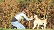 Stock Video Footage of teen girl playing with dog in autumnal park
