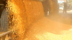 Loading Corn into the Silo Stock Footage