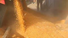 Loading Corn into the Silo Stock Footage