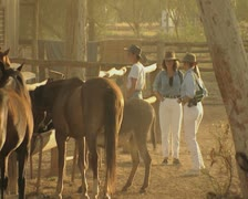 Women waiting by horses Stock Footage